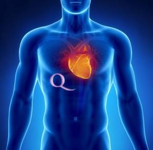 Deportes de cardio intenso